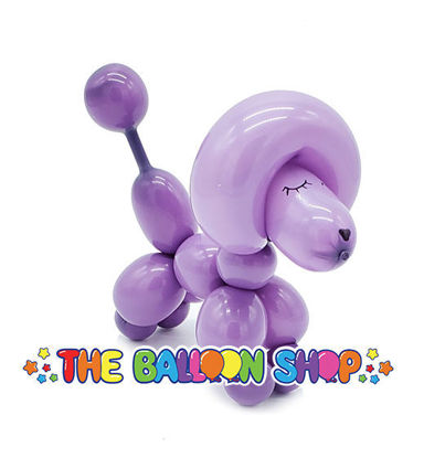Picture of Poodle - Balloon