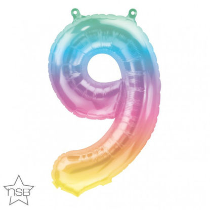 "Picture of 16"" Number 9 Jelli Ombre (air-filled)"